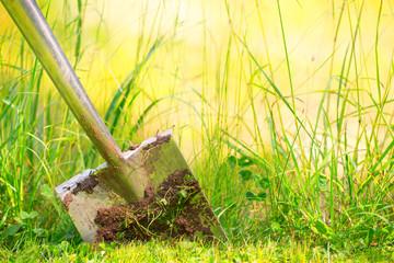 gmbh mantel zu kaufen gmbh kaufen vorteile Landschaftsbau schnell gmbh gebraucht kaufen