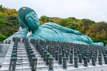 The Reclining Buddha of Nanzoin Temple in Fukuoka, Japan Wall mural