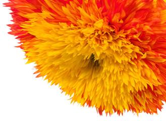 Fiery Red Double Sunflower