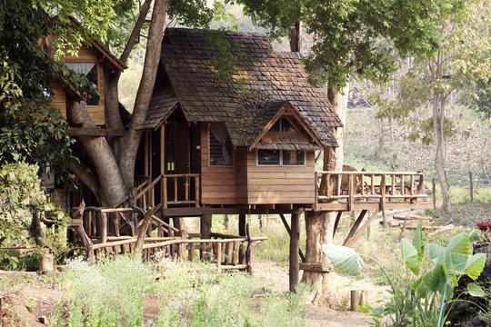 Thai treehouse