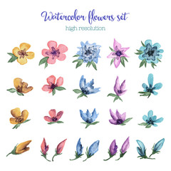 Watercolor flowers set.