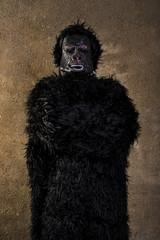 man dressed as gorilla monkey poses