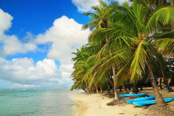 Beautiful beach in Guadeloupe, Caribbean Islands