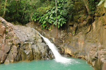 Beautiful waterfall in a rainforest. Saut d'Acomat, Guadeloupe, Caribbean Islands, France