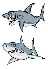Cartoon white sharks with evil smiles