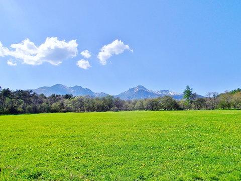 新緑の高原と八ヶ岳