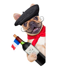 Fototapete - french bulldog with  french  beret hat, isolated on white background, behind white and blank banner  or placard, holding a bottle of red wine