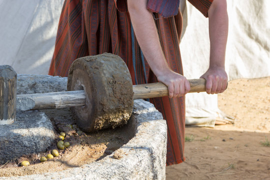 man works at ancient Roman press for olive oil