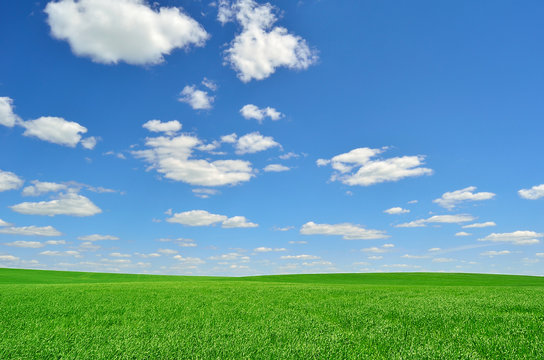 bright green field under a sky with clouds
