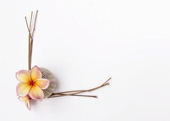 Fresh flower vase and dry branch frame