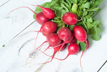 Radishes with green leaves