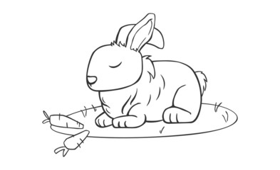 Rabbit line art vector image illustration for coloring art