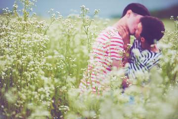 Defocused male couple kissing in daisy flowers, on summer field