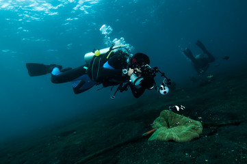 diver take a photo video upon coral lembeh indonesia scuba diving