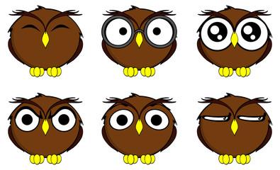 owl cartoon expressions set in vector format