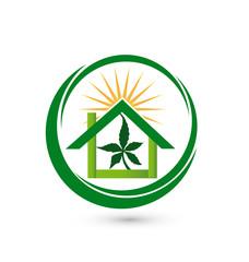 House store leaf cannabis plant logo