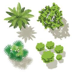 4 arbres - design pour plans