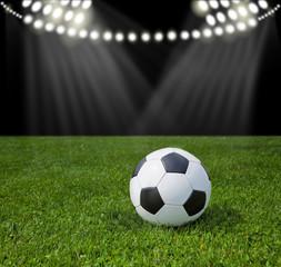Stadium for soccer. Ball on green grass.