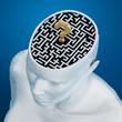 Labyrinth inside human head