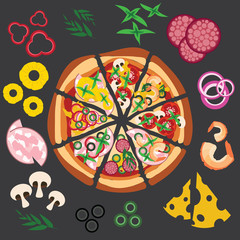 Vector pizza with ingredients lying around, illustration