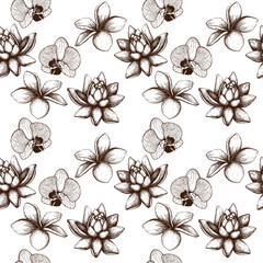 Seamless pattern with Ink hand drawn Frangipani (Plumeria) flower, lotus and orchid sketch. Tropical flower background isolated on white. Exotic vintage plant illustration