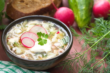 Russian cold soup - okroshka