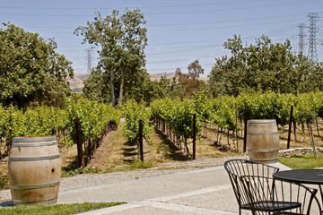 Wine tasting room in Winery