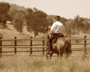 A sepia photo of a cowboy riding his horse in a meadow along a fence.