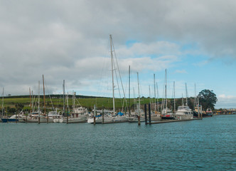 view of marina, Gulf Harbour, Auckland, New Zealand