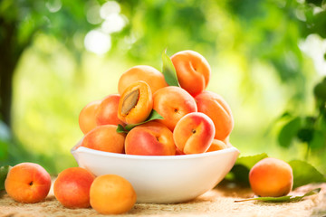 Fotoväggar - Apricot. Ripe organic apricots over green nature blurred background