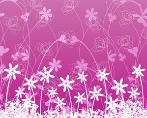 Flower on purple background