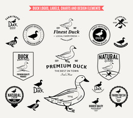 Duck Logos, Labels, Charts and Design Elements