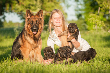 Beautiful happy girl with a family of german shepherd dogs