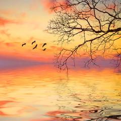 Beautiful summer landscape with birds