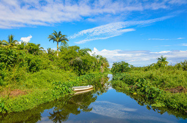 Canal and tropical vegetation near Saint Paul