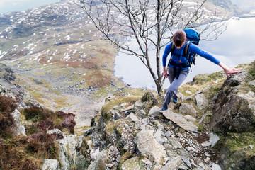 Female climbing rock ridge.