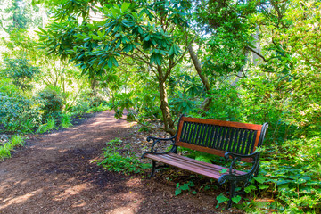 An Inviting Bench at the End of a Garden Path