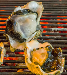 Barbecue fresh shell oysters cooking seafood.