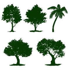 tree set vector illustration painted