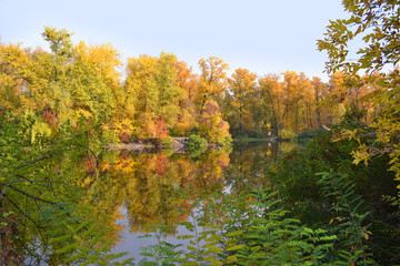 Tuinposter Canada Autumn forest and lake
