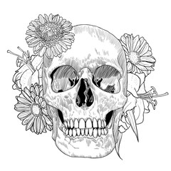 Vintage Card with Skull and Flowers on White Background. Day of the Death. Vector illustration.