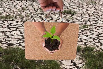Green returns to nature,people, ecology, biology and environment concept,hand holding board and green tree