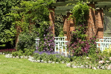 Ogród - ogródek - klematis - irysy