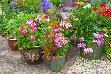 Containers filled with colorful plants.