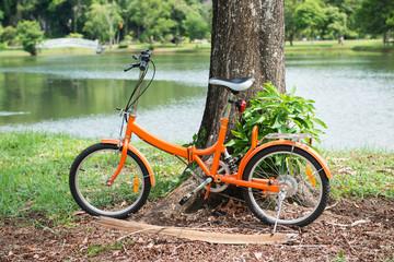 orange folding bicycles in park