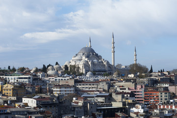 View of the Suleymaniye Mosque over the rooftops