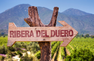 Ribera Del Duero wooden sign with vineyard background