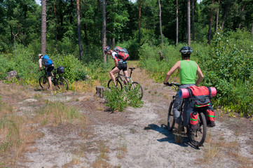 Group of tourists  mountain bike ride on  forest trail.