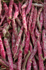 Detail of 'Borlotti' beans in outoor market