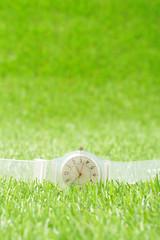 緑の芝生の上に置かれた白い腕時計